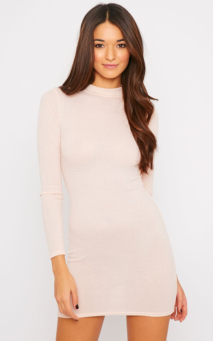 Basic Nude Long Sleeve Mini Dress 1