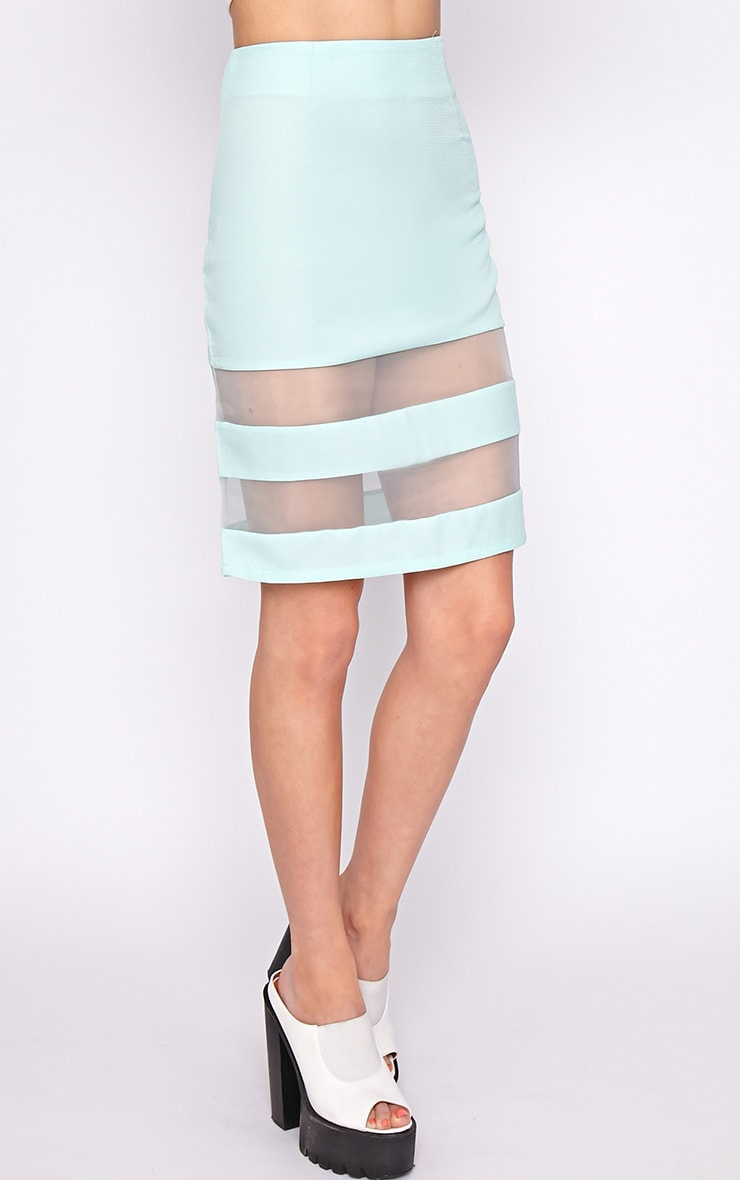 Dakota Mint Mesh Insert Skirt  4