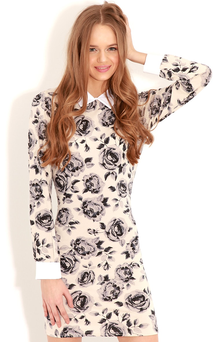 Demi Beige Floral Collar Dress 1