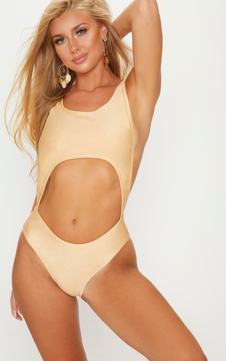 Nude Cut Out Swimsuit