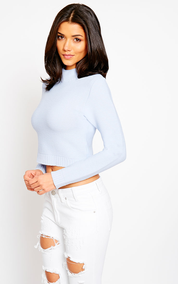 Allie Blue Ribbed Turtle Neck Crop Top 4