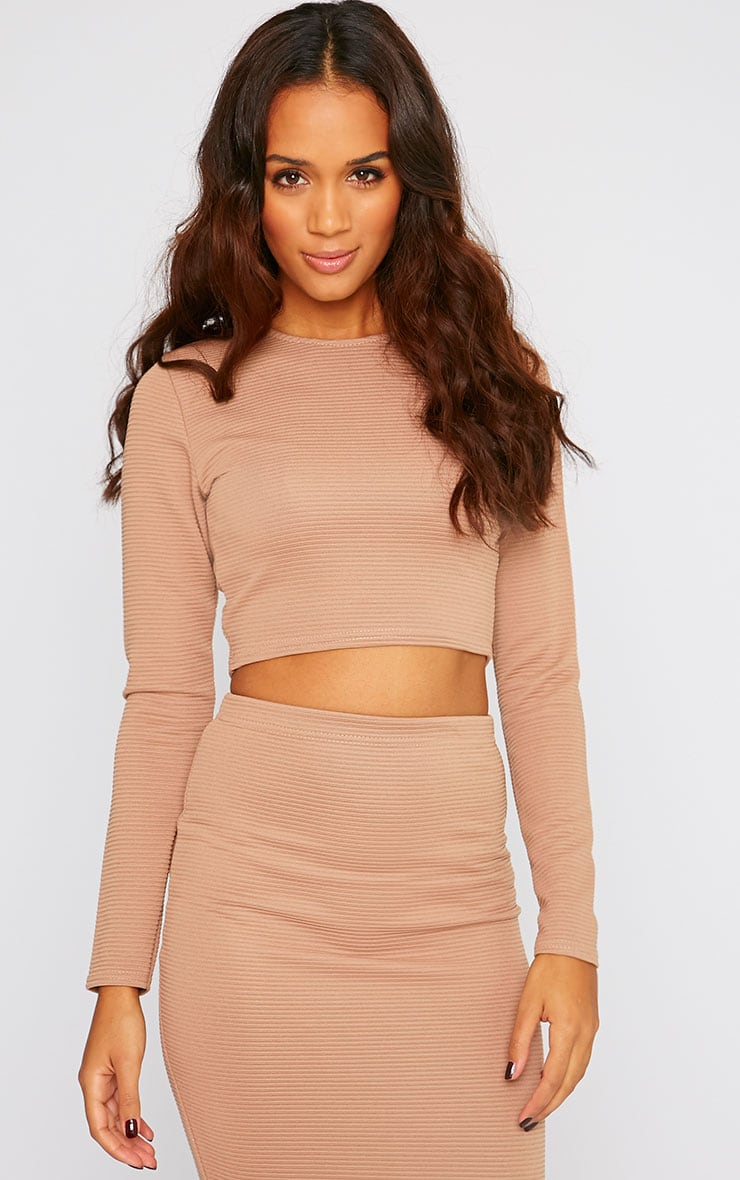 Britney Camel Ribbed Long Sleeve Crop Top 1