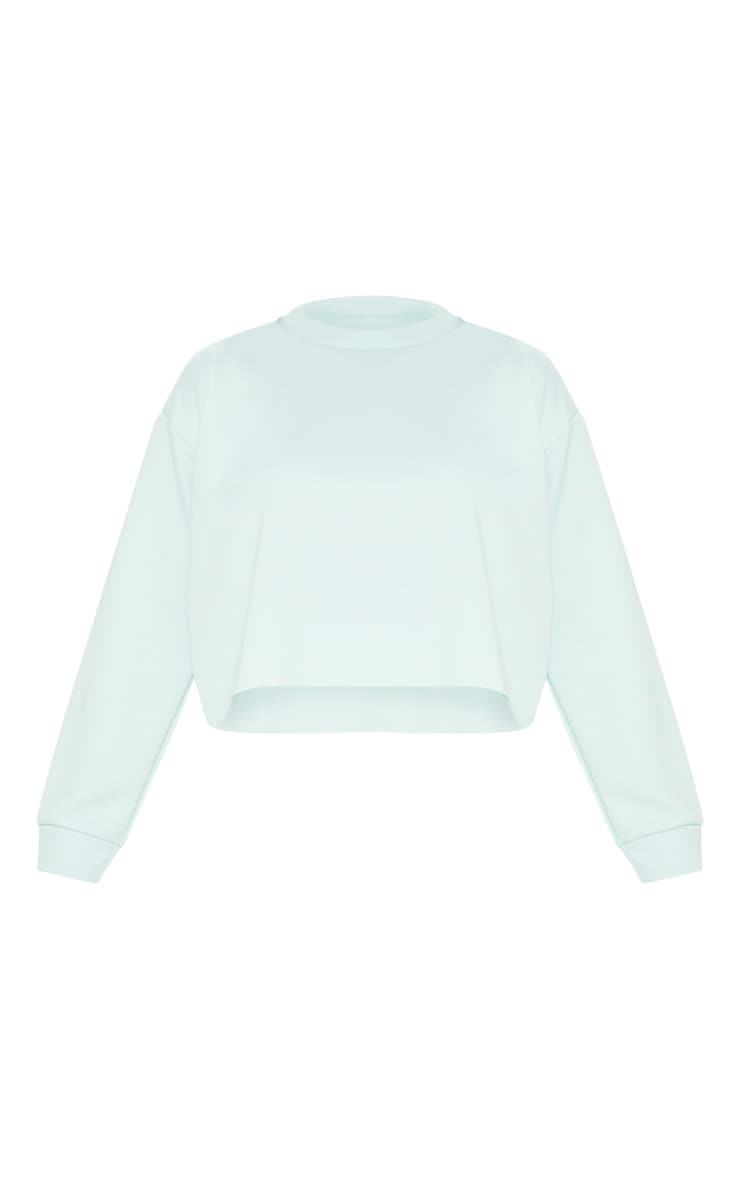 Plus MInt  Extreme Crop Sweater 3