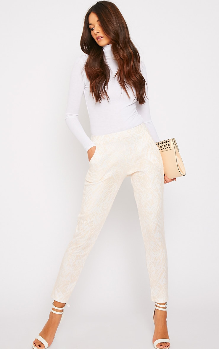 Ally Nude Abstract Print Flocked Cigarette Trousers 4