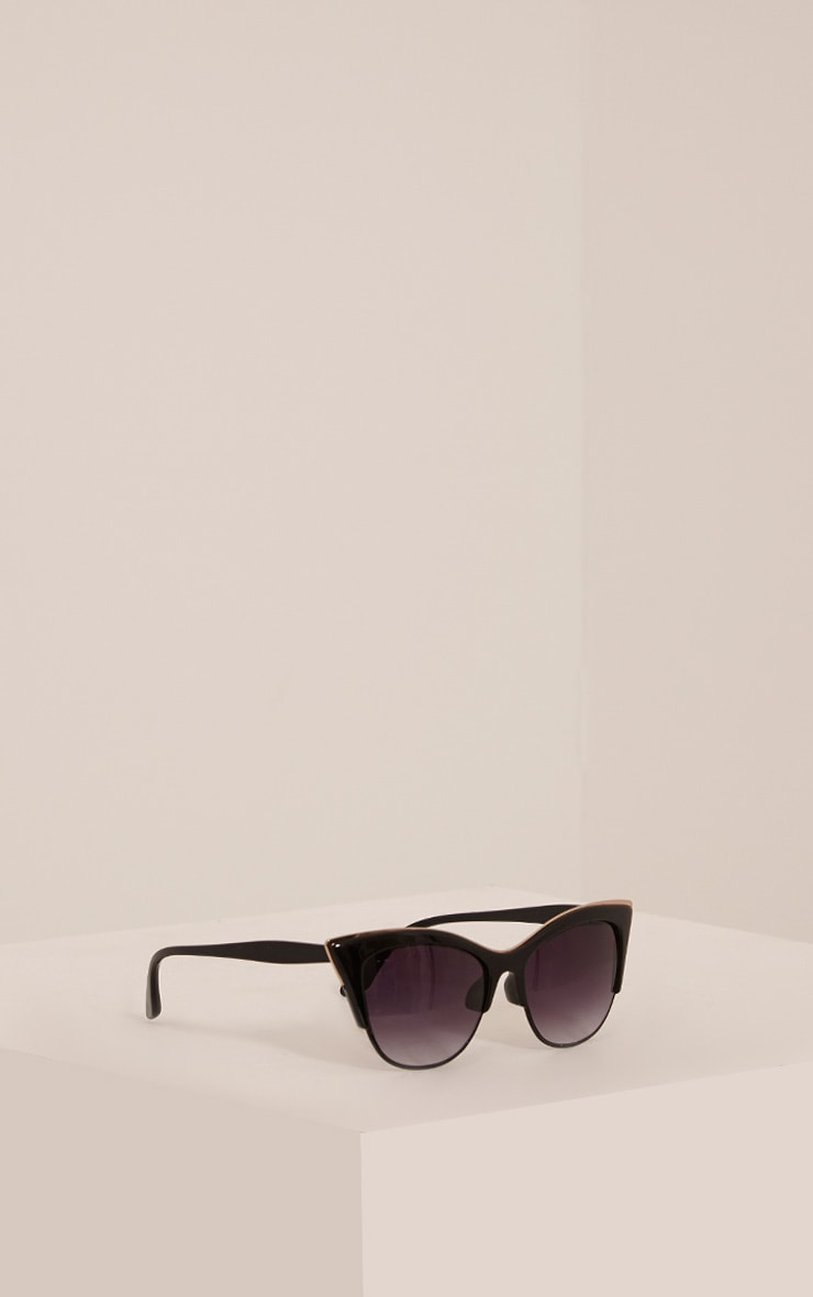 Rio Black Retro Frame Sunglasses 4