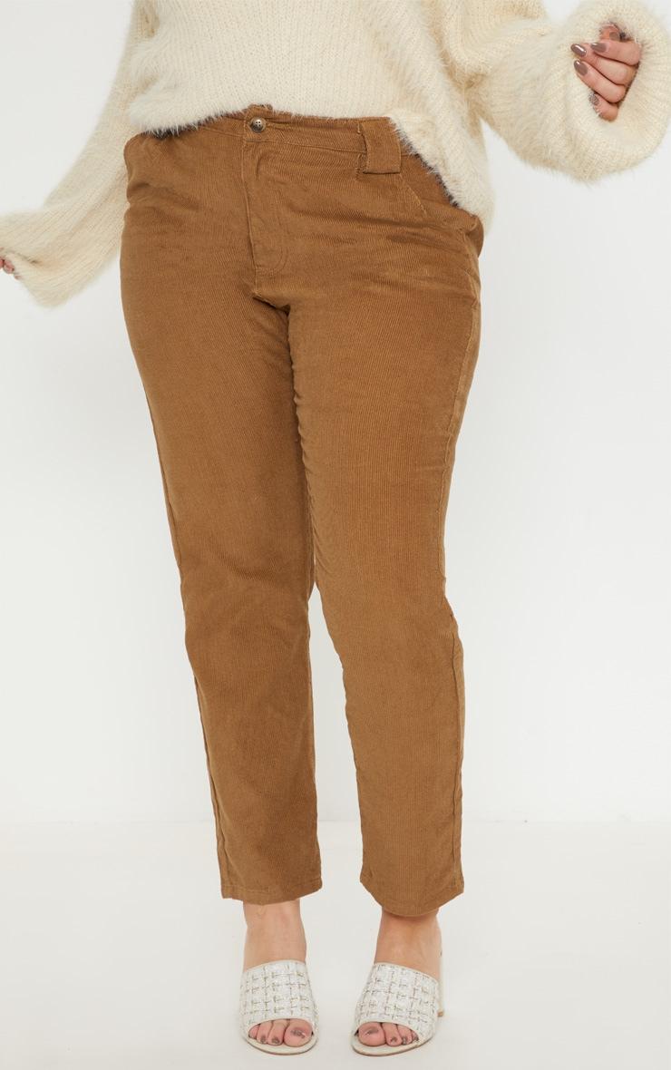 Plus Brown Corduroy Pants 2