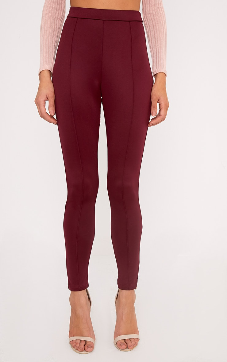 Larena Berry Front Seam Skinny Trousers 2