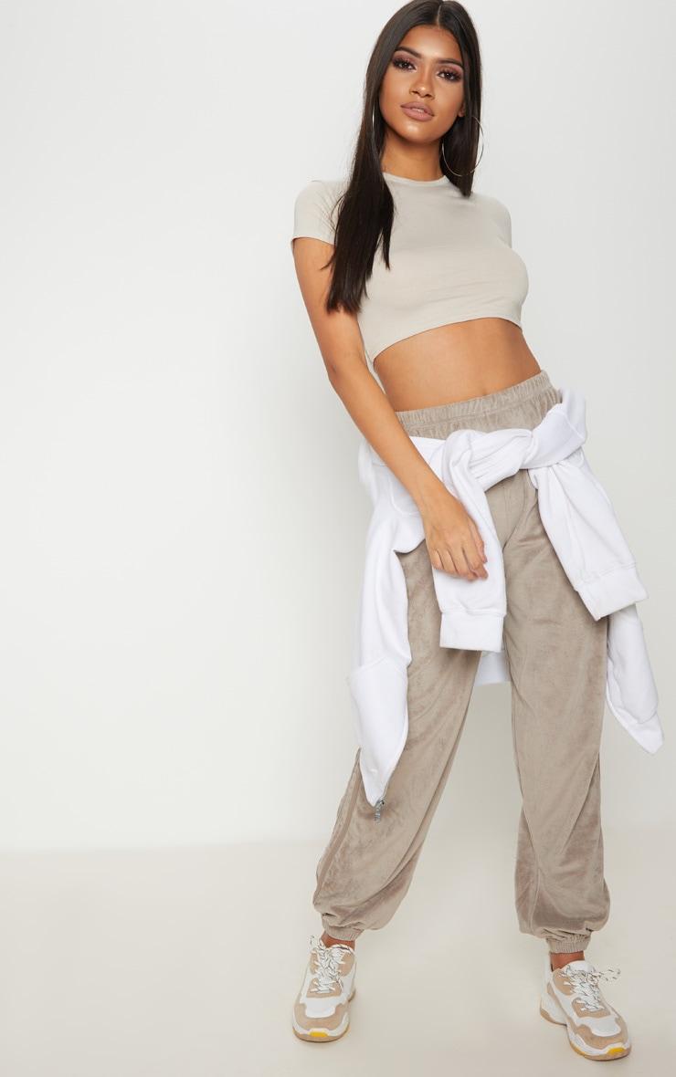 Basic Stone Short Sleeve Crop T Shirt 1