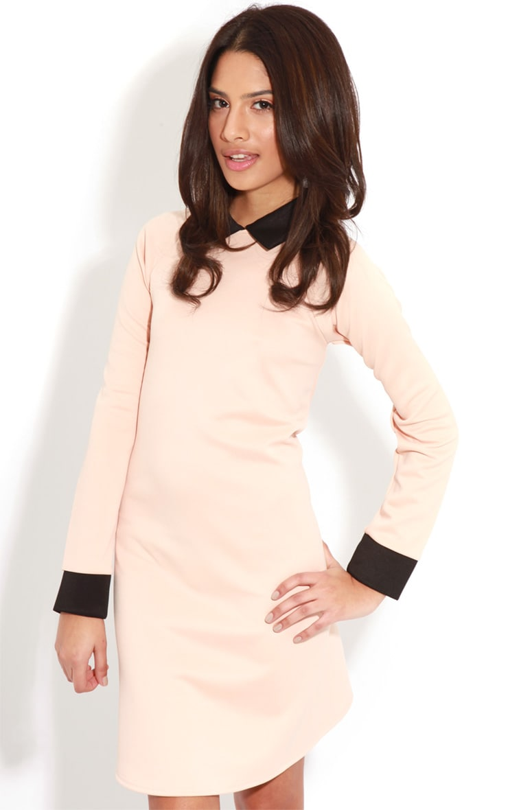 Evelyn Nude Long Sleeved Collar Dress 1