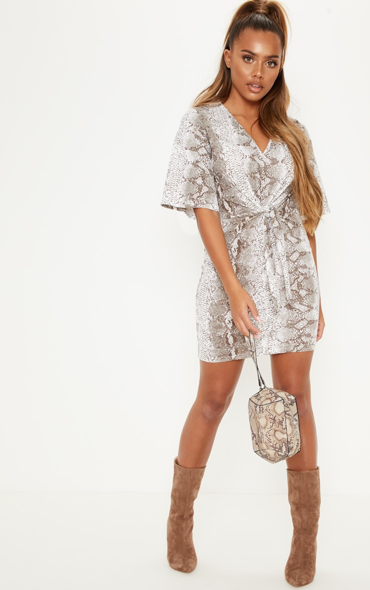 Tan Snake Print V Neck Tie Front Shift Dress