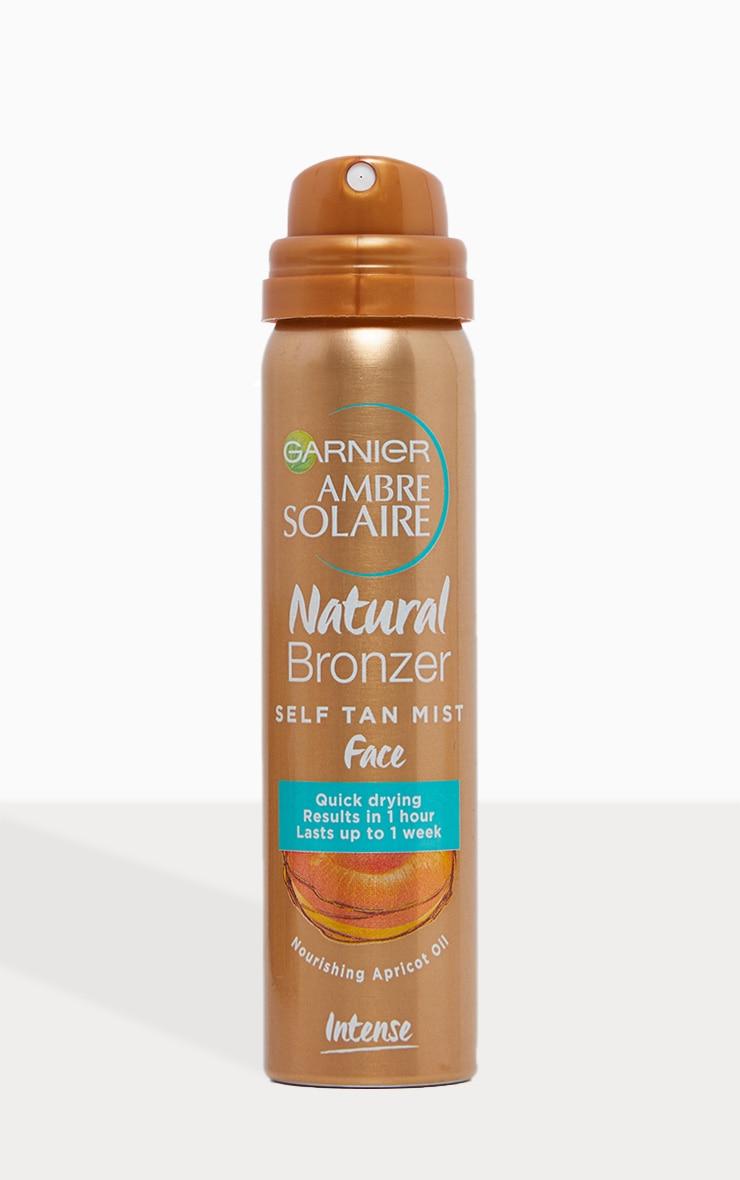 Garnier No Streaks Bronzer Dark Self Tan Face Mist 75ml 2