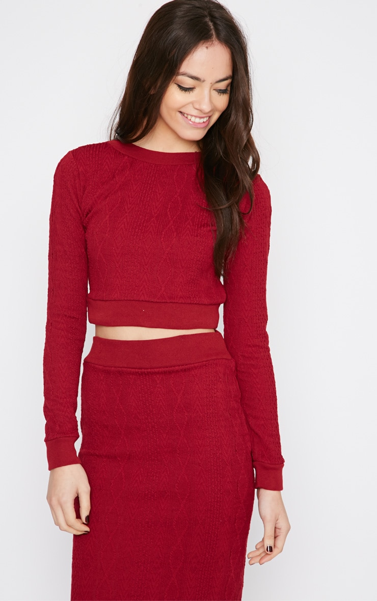Deni Red Cable Knit Crop Jumper  4