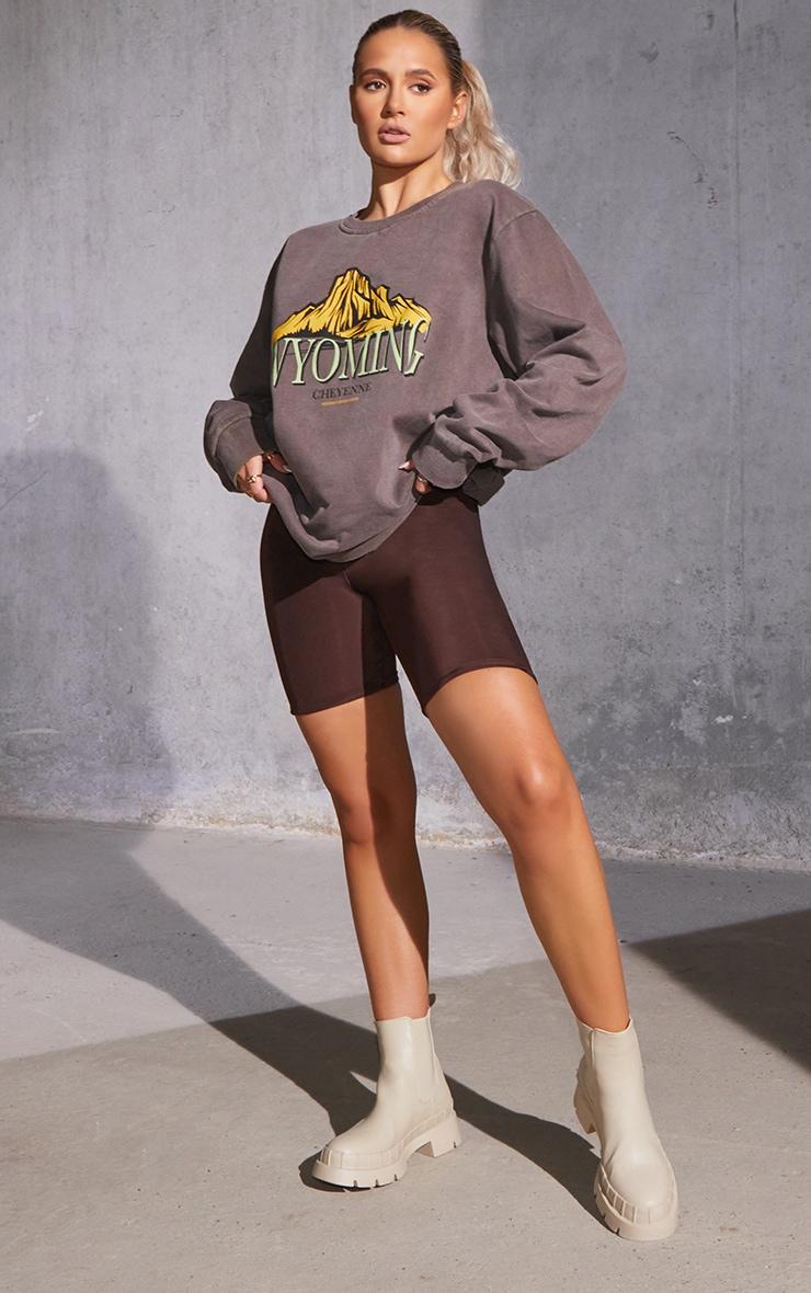 Dark Brown Slinky Bike Shorts 1