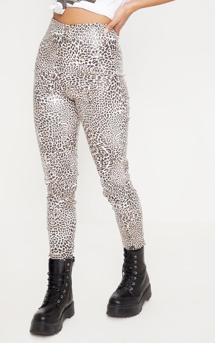 Leopard Print Faux Leather Skinny Trouser 2