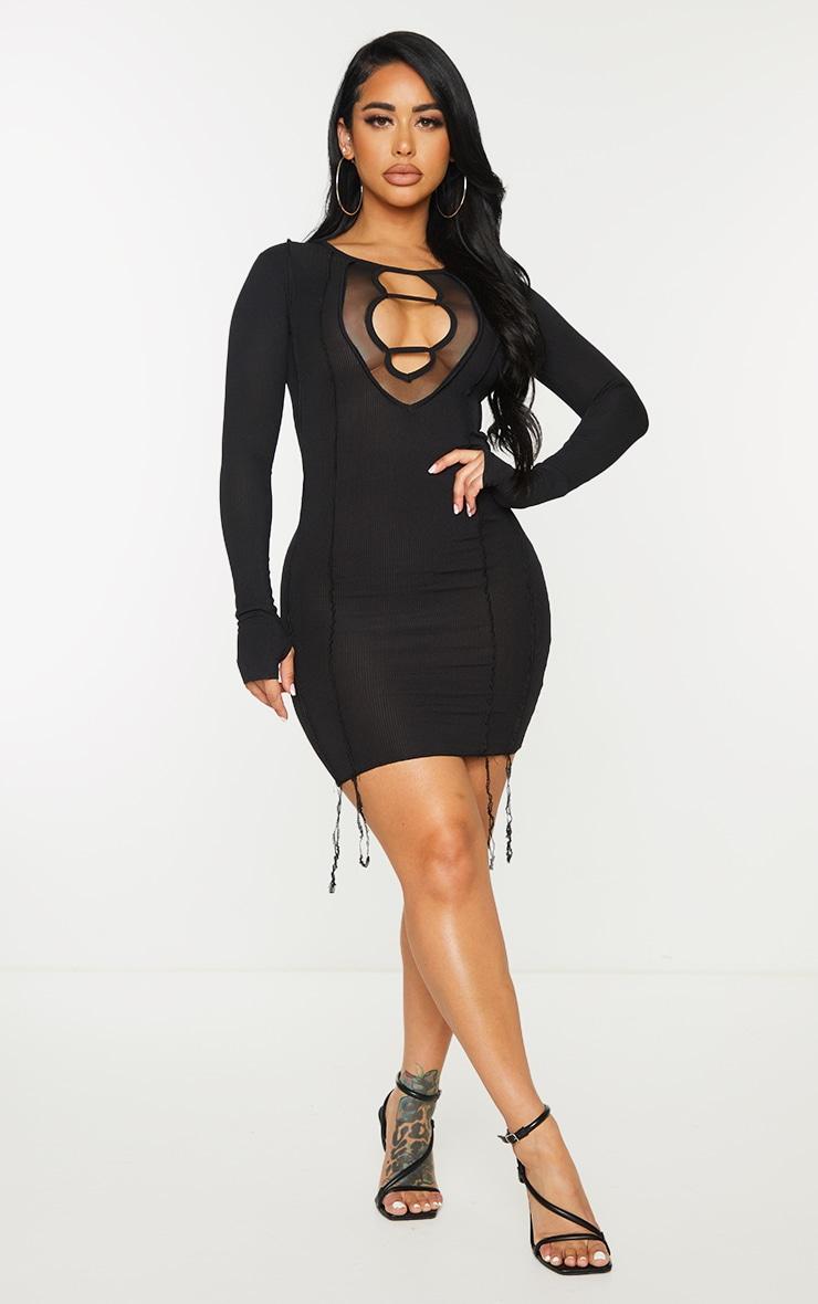 Shape Black Rib Mesh Panel Seam Detail Bodycon Dress 3