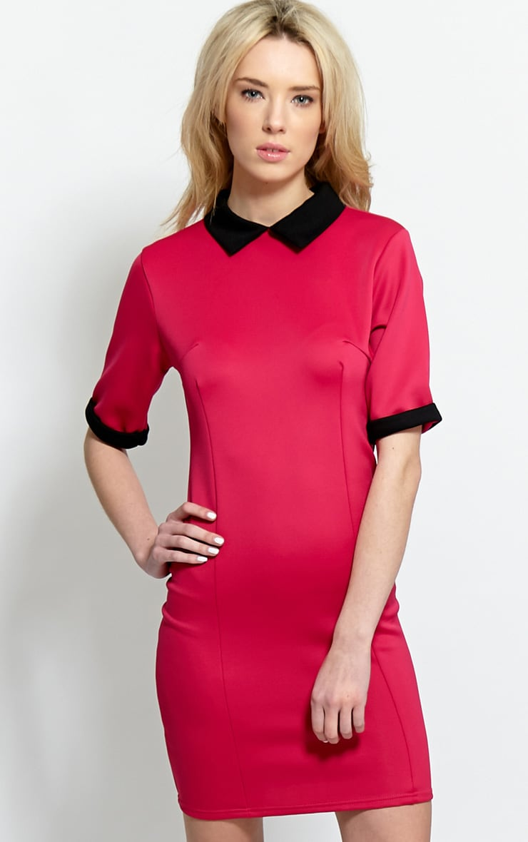 Katrina Fuchsia Collar Dress 4