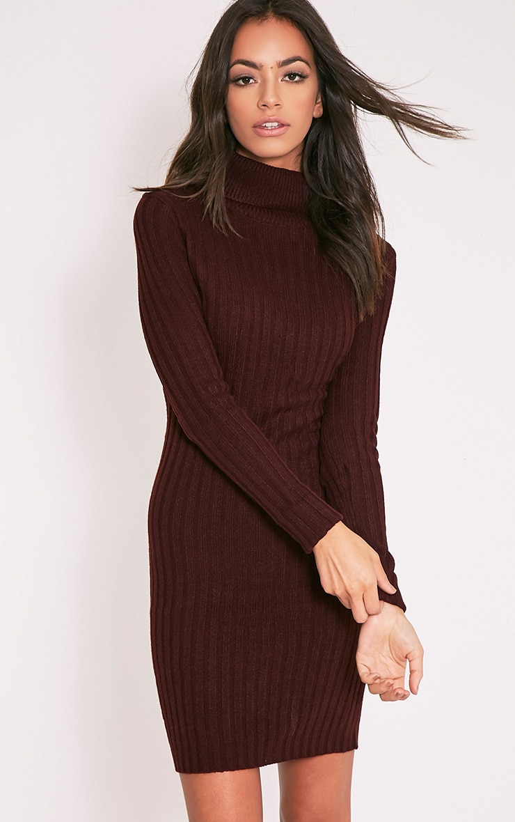 Bianca Berry Ribbed Roll Neck Jumper 1