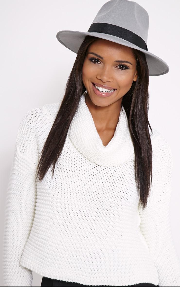 Saria Grey Fedora Brim Hat 1