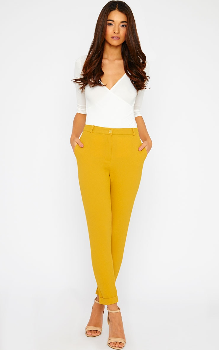 Twiggy Mustard Trousers 1