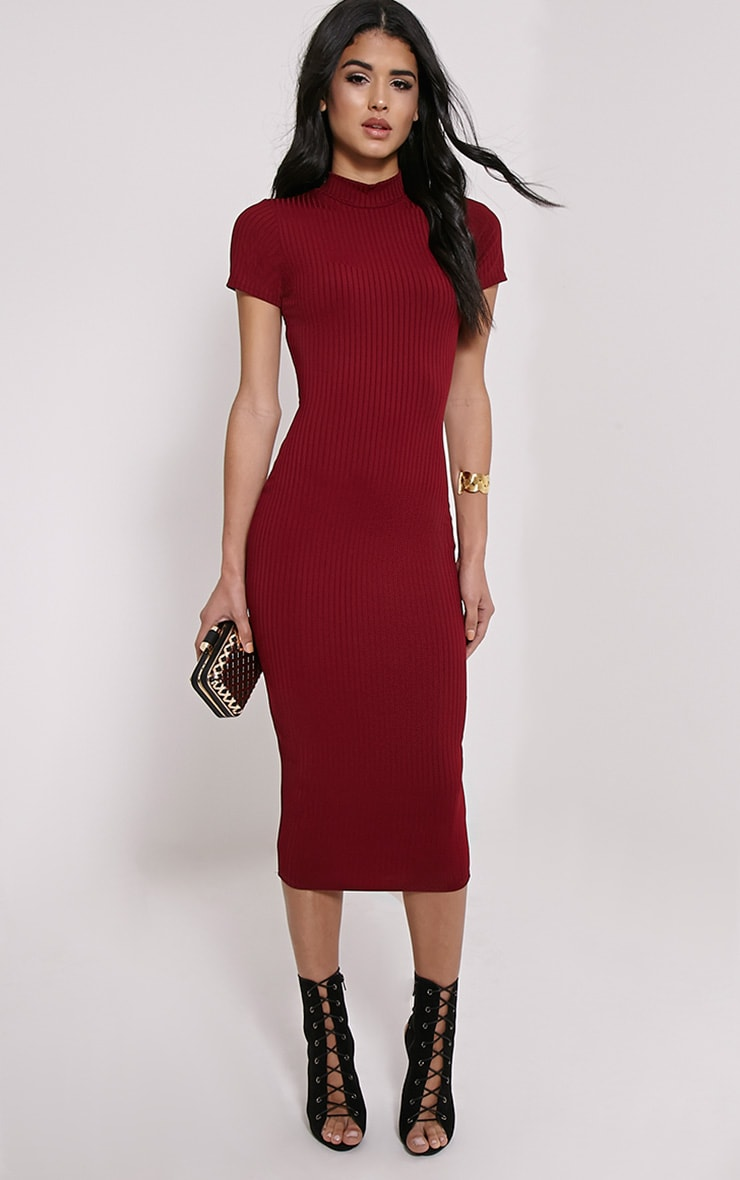 Ebanie Wine High Neck Ribbed Midi Dress 1