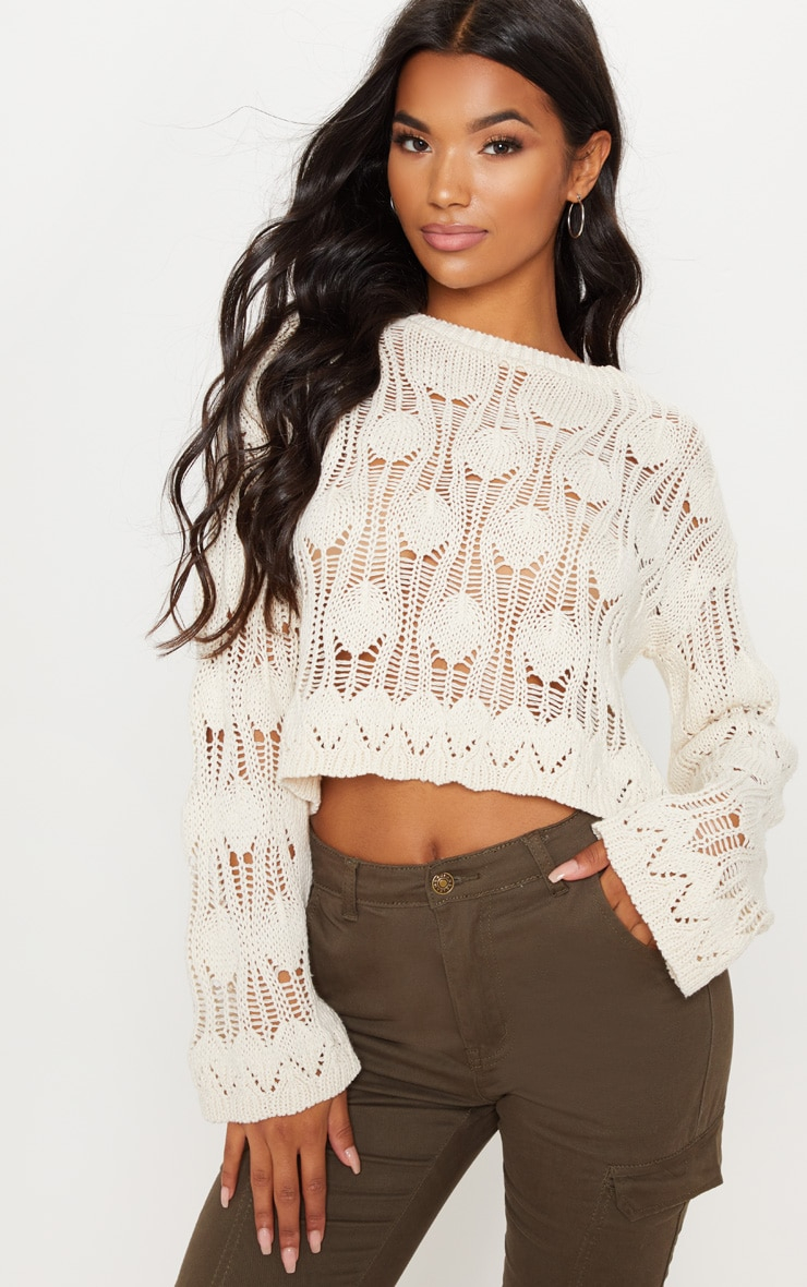 Cream Crochet Cropped Long Sleeve Top
