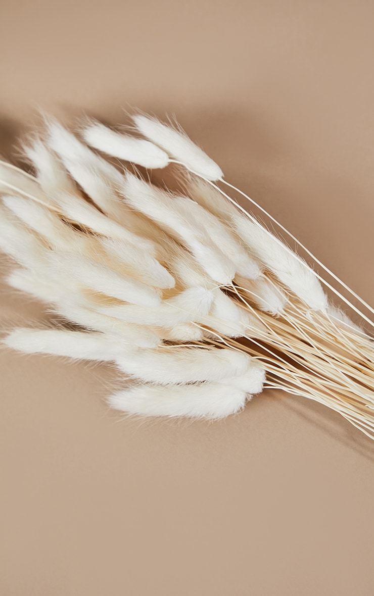 White Bunny Tails 4