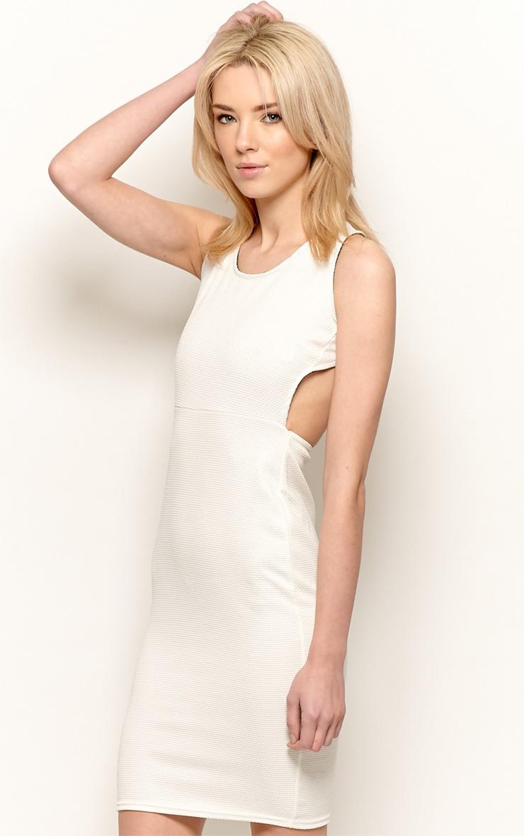 Zelia Beige Backless Dress 1