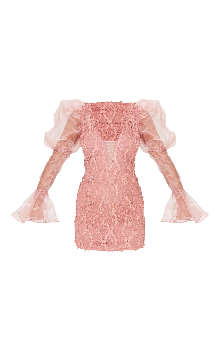 Pink Organza Sleeve Lace Bodycon Dress 5