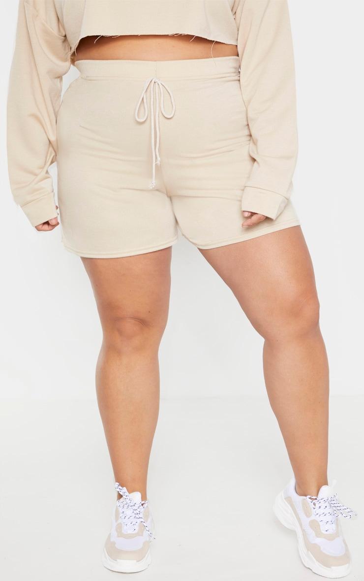 Plus Stone Sweat Longline Shorts  2
