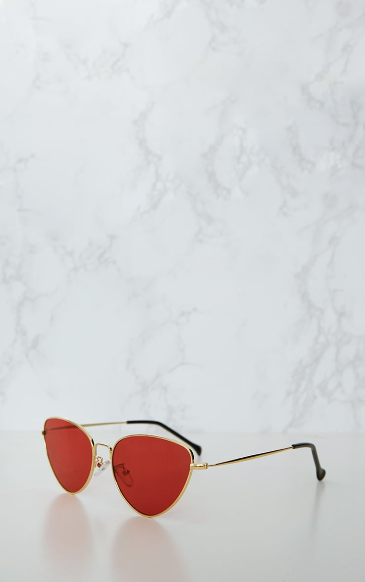 Red Cat Eye Lens Retro Sunglasses 3