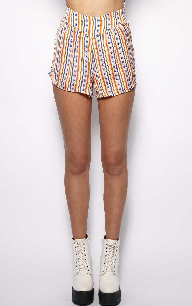 Gracie Orange Stripe Printed Shorts 4