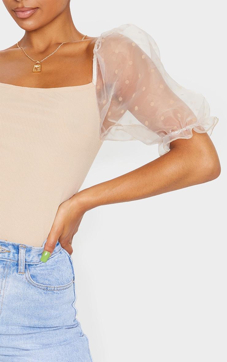 Stone Polka Dot Organza Sleeve Bodysuit 4