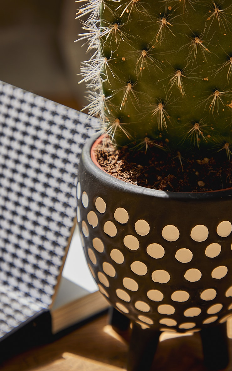 Black Spotted Planter On Legs 2