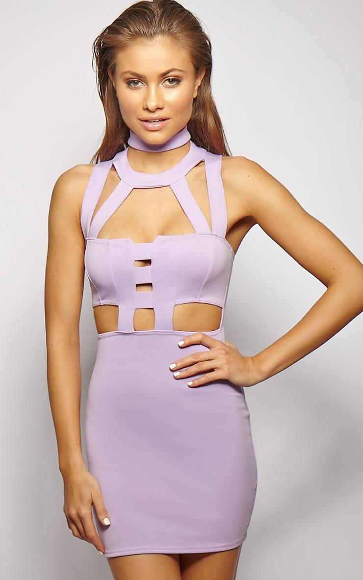 Xirena Lilac Caged Mini Dress 1