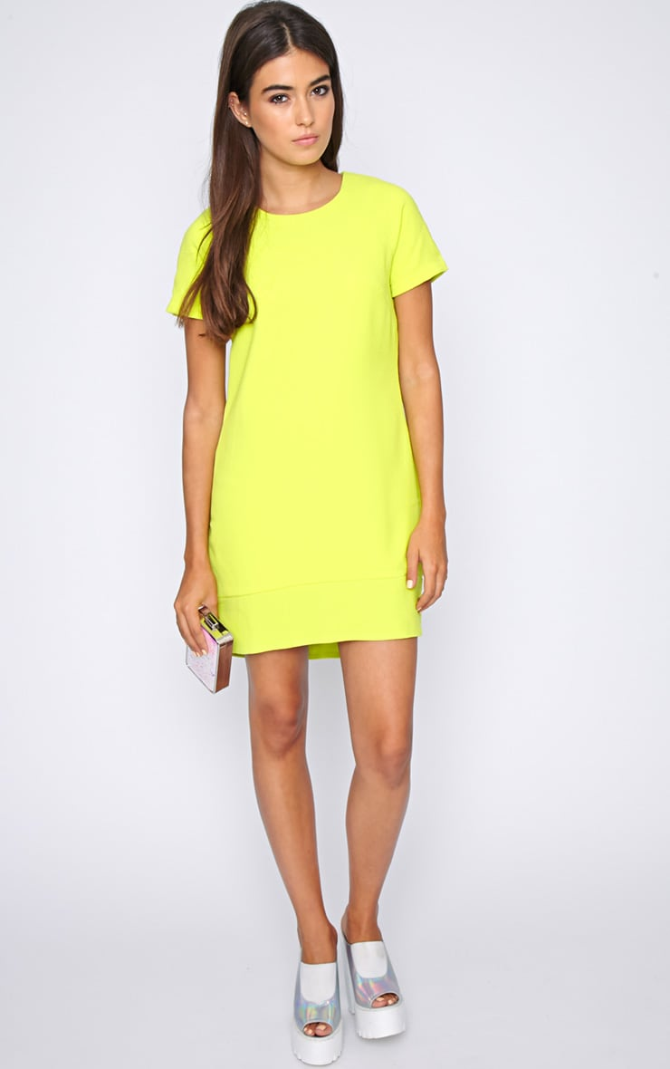 Amelia Lime Shift Dress 3