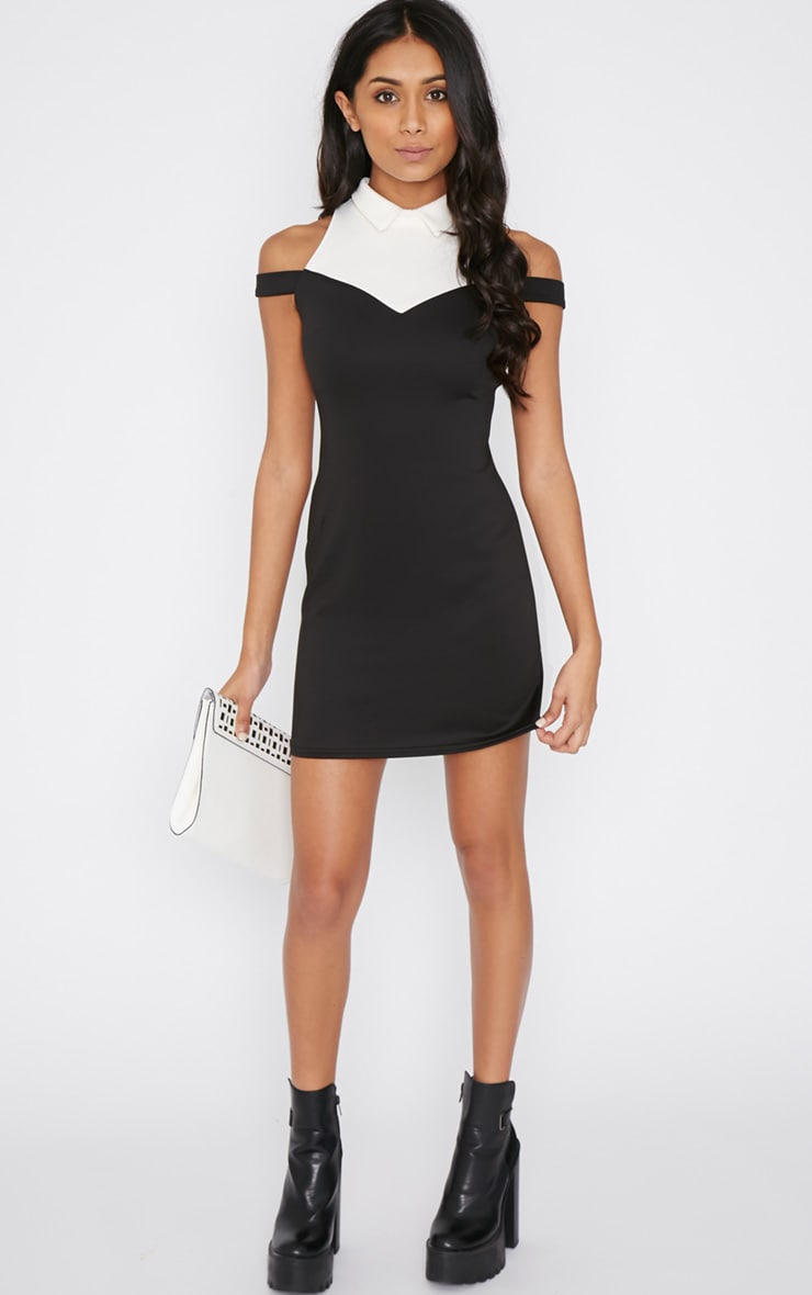 Miriam Monochrome Collar Dress  3