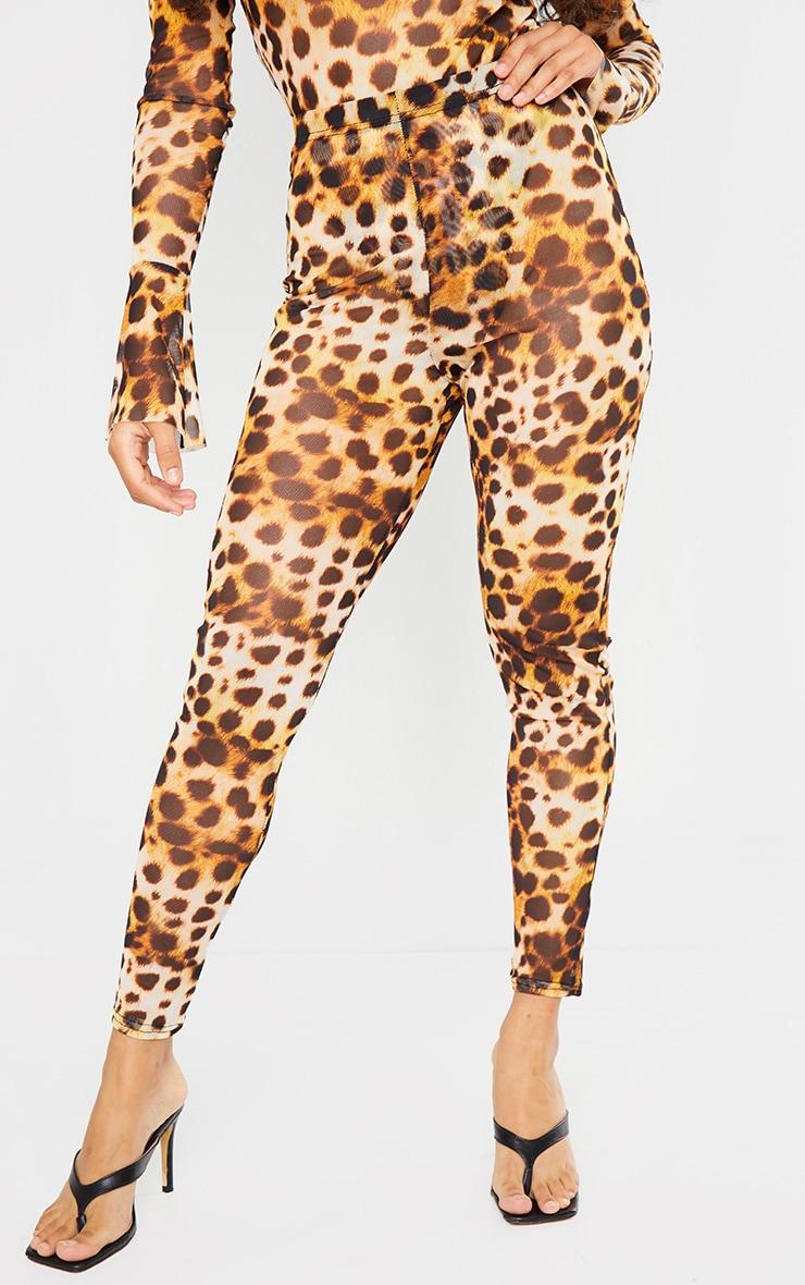 Petite Brown Cheetah Mesh Leggings 2