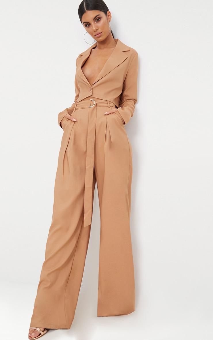 Camel Wide Leg Tie Waist Pants 1