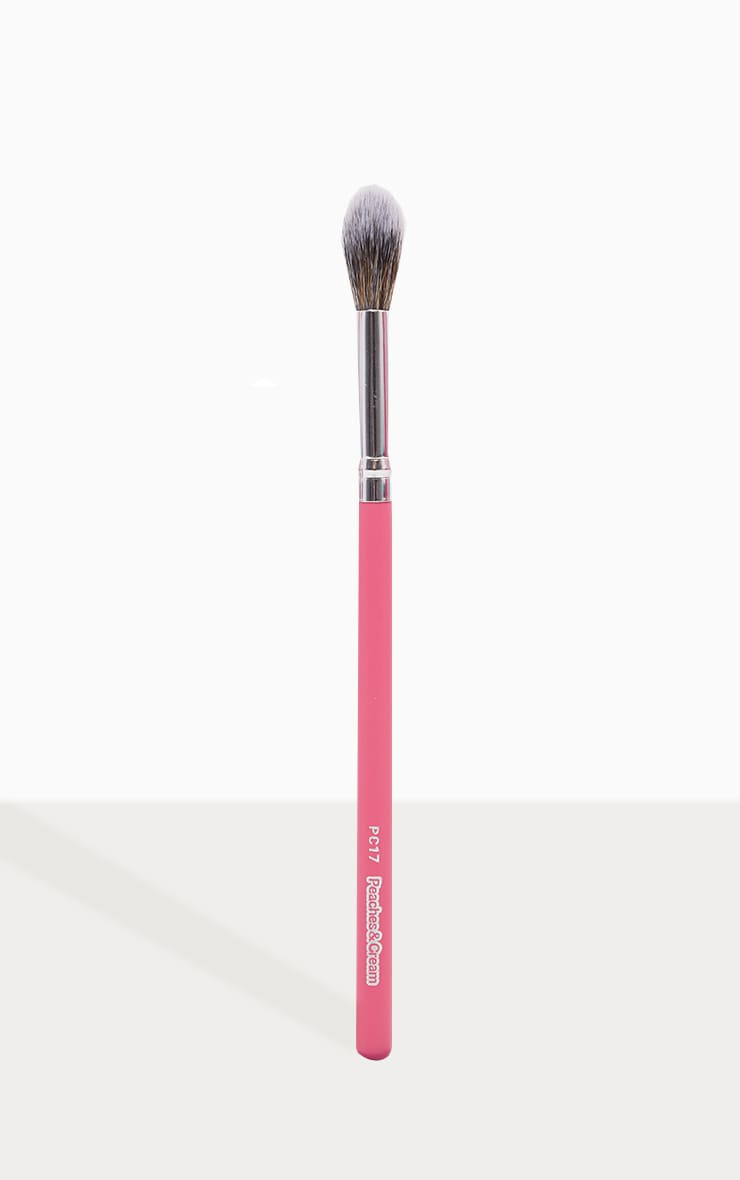Peaches & Cream PC17 Highlighter Brush 1