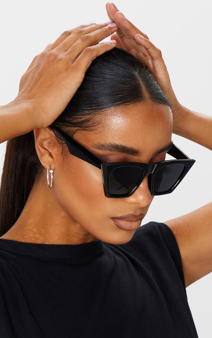 Black Triangle Sunglasses 1