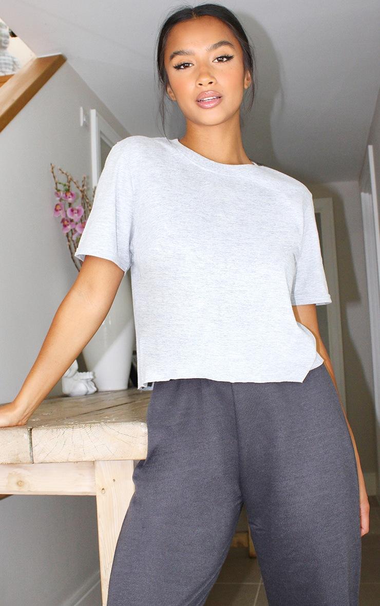 Petite Grey Crop T -Shirt 1