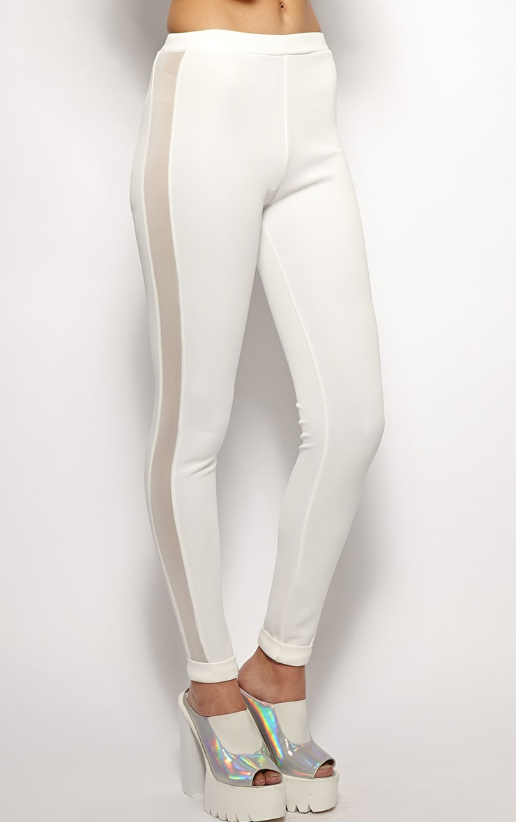 Yanoba White Premium Mesh Panel Legging  4
