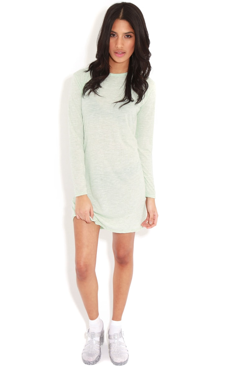 Callie Mint Long Sleeve Swing Dress 3