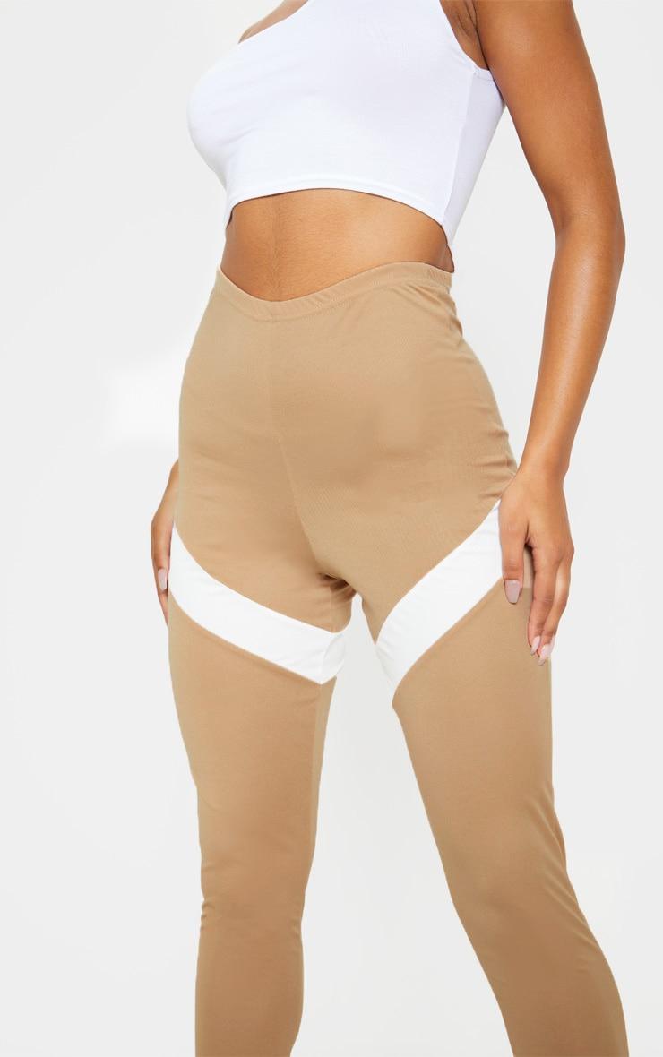 Camel Contrast Panel Leggings 5