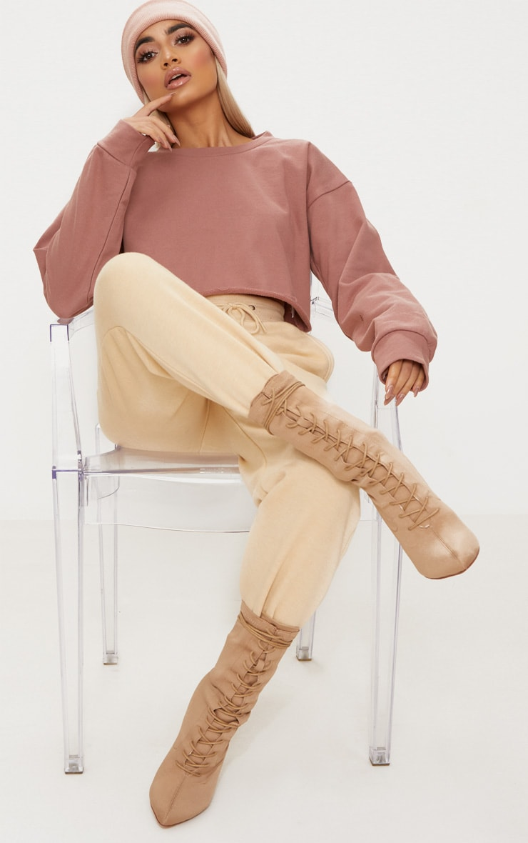 Mauve Cut Off Crop Longsleeve Sweater  4
