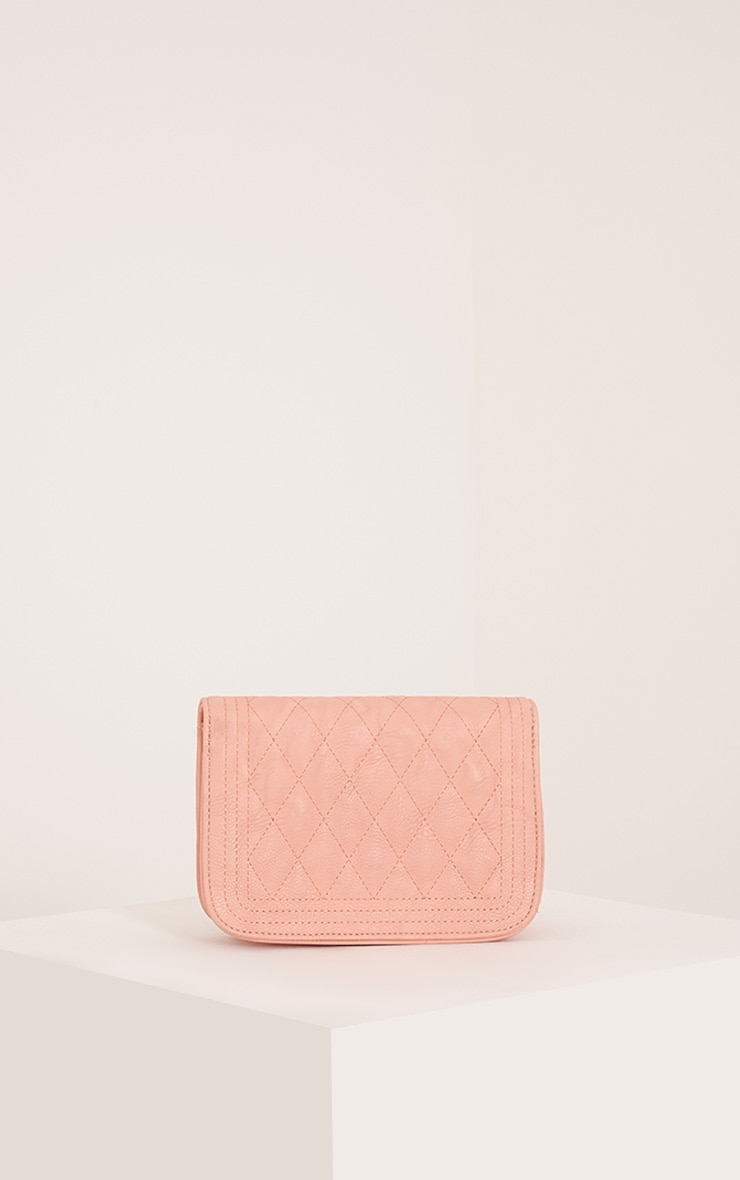 Emma Nude Quilted Chain Strap Shoulder Bag 5