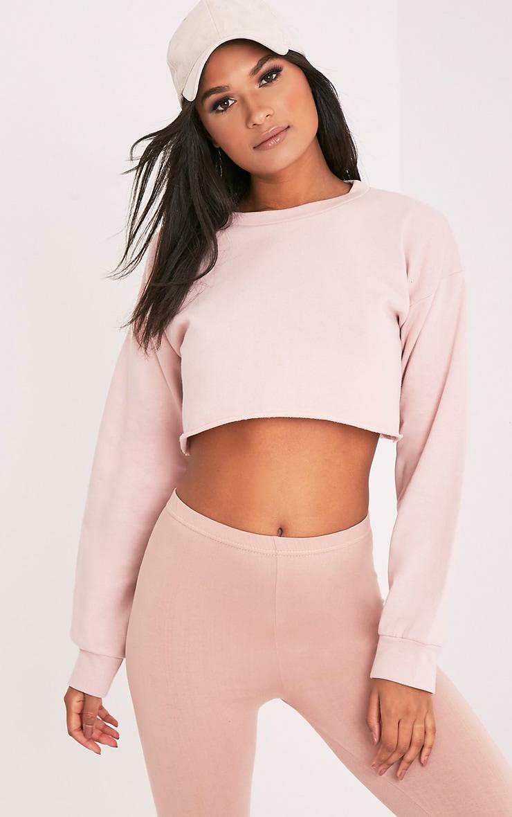 Beau Pink Cut Off Crop Longsleeve Sweater 1