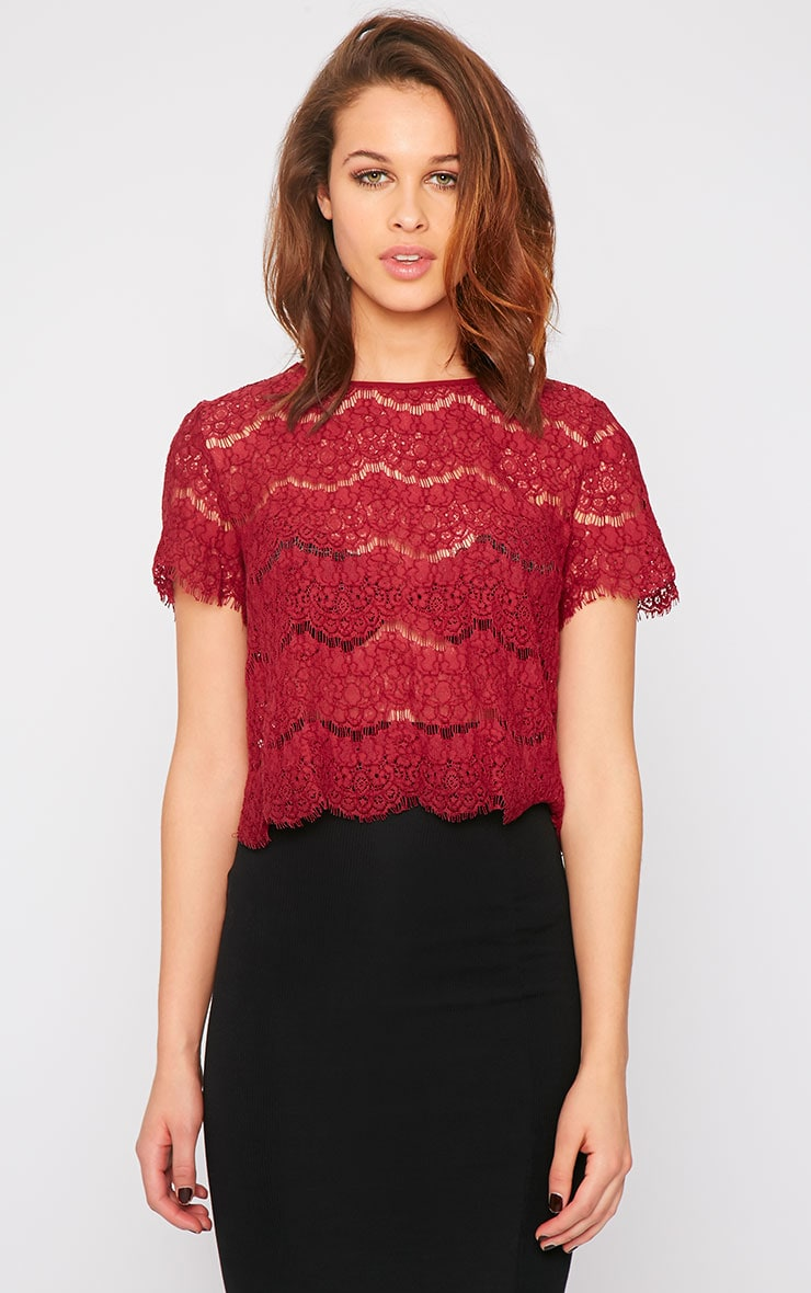 Ninette Wine Lace Crop Top  4