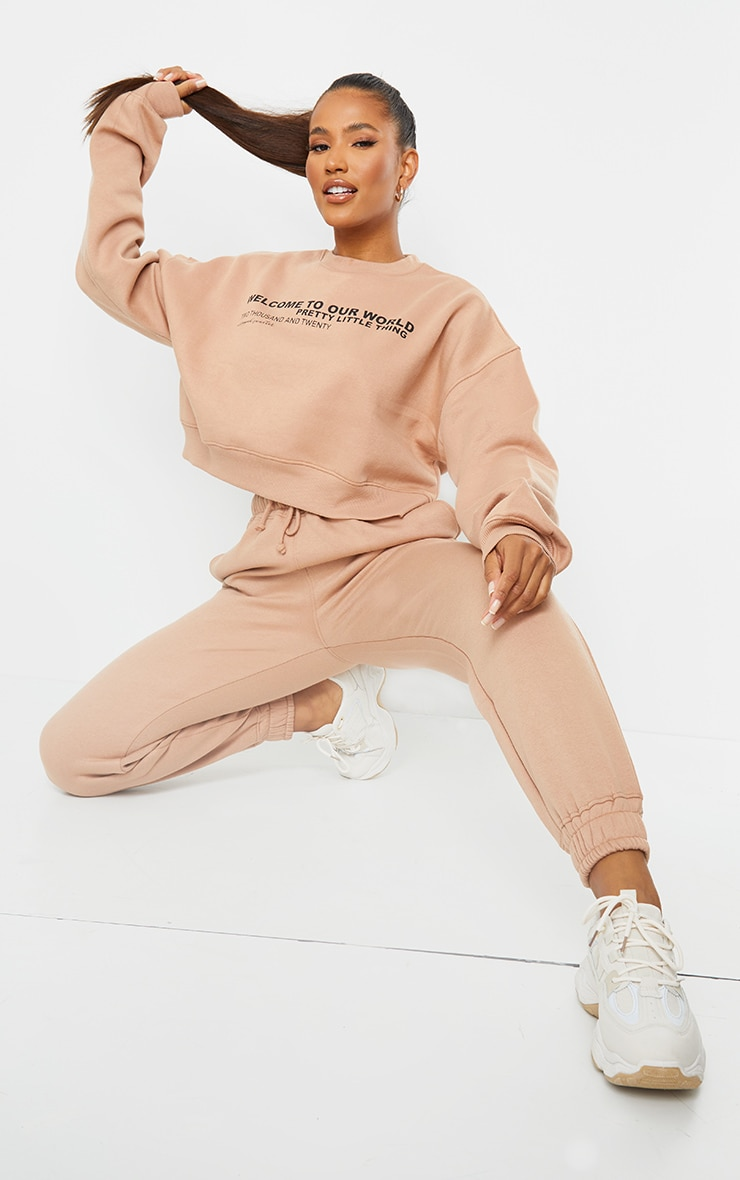 PRETTYLITTLETHING Tan 2020 Slogan Cropped Sweater 4