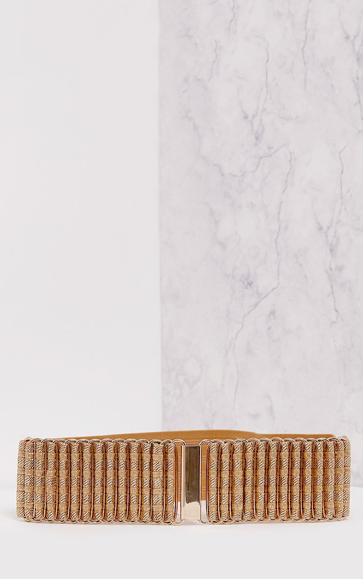 Masimi Gold Metallic Waist Belt 5